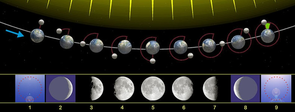 Fases Lunares - explicacion