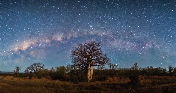 Okavango - 1